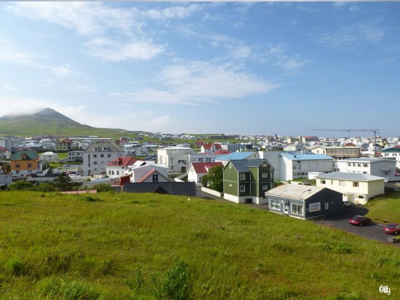 Islande_îles vestmann_©lespetitsvoyagesdelilly