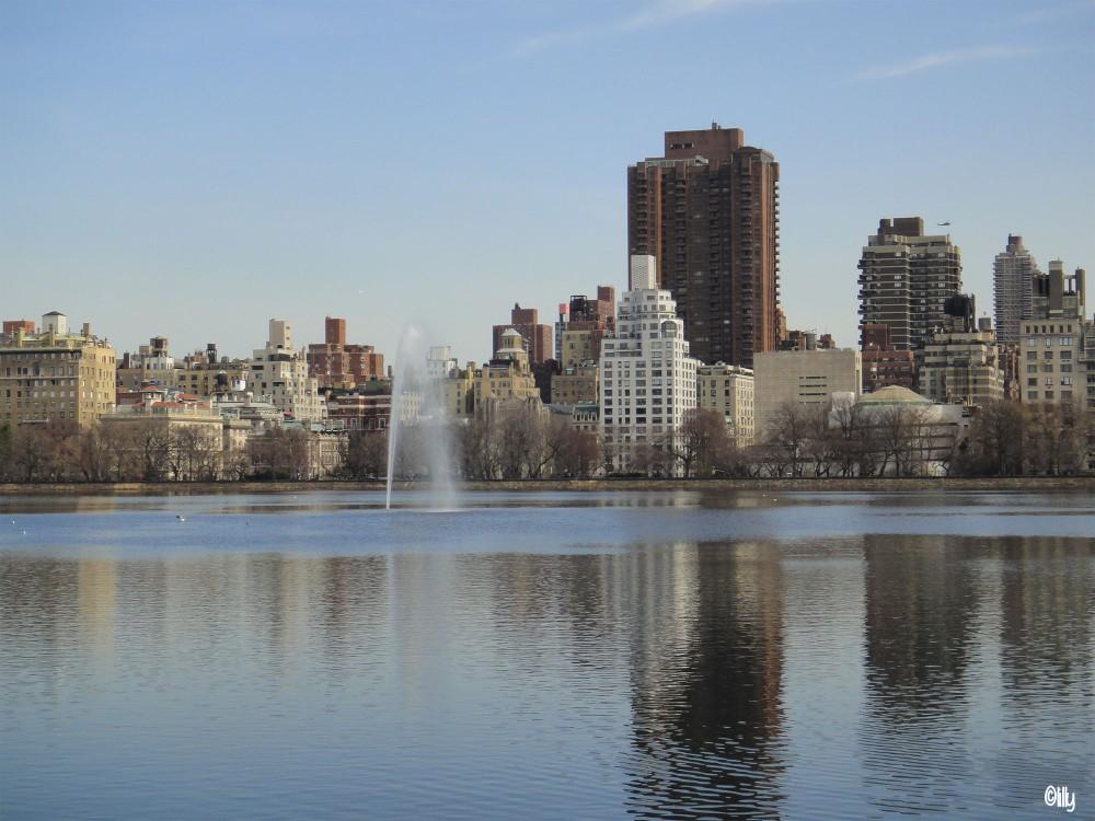 New York_Central Park_©lespetitsvoyagesdelilly