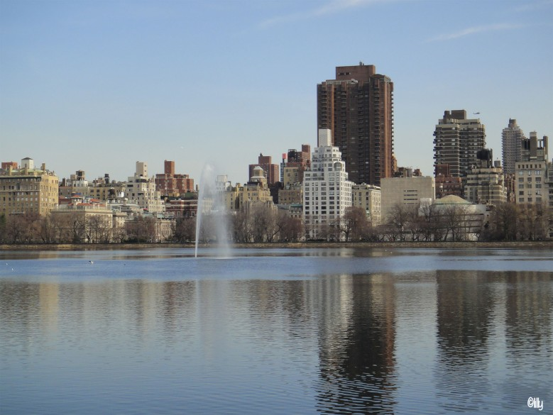 New York_Central Park_©lespetitsvoyagesdelilly