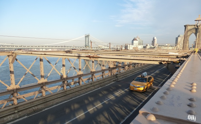 new-yorkbridge_lespetitsvoyagesdelilly