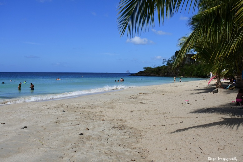 Martinique_Anse Figuier2_©lespetitsvoyagesdelilly