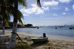 Martinique_Sainte Anne4_©lespetitsvoyagesdelilly