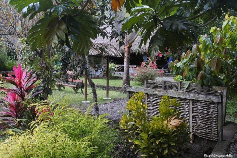 Martinique_Savane des Esclaves8©lespetitsvoyagesdelilly