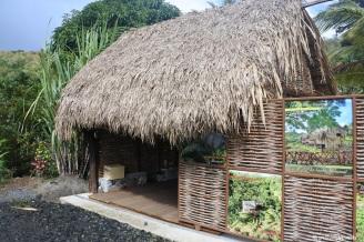Martinique_Savane des Esclaves©lespetitsvoyagesdelilly