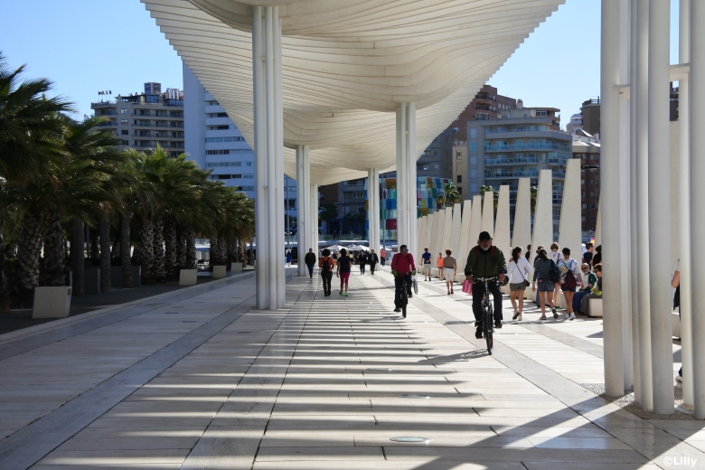 Malaga_Allée des palmiers©lespetitsvoyagesdelilly