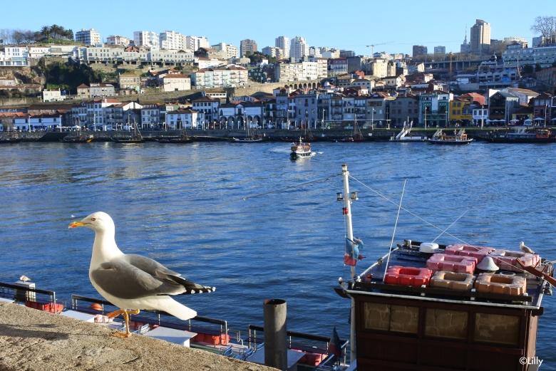 Porto__©Lilly