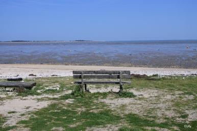 Front de mer - marée basse