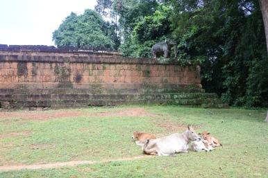 ©Lespetitsvoyagesdelilly_Angkor_8938