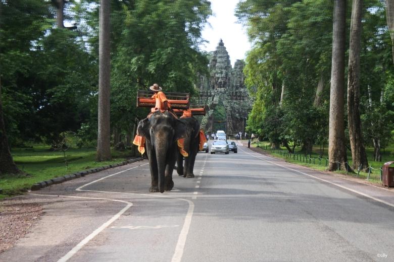 ©Lespetitsvoyagesdelilly_Angkor_8971