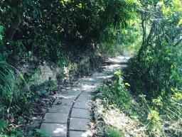 Marche à Koh Lanta