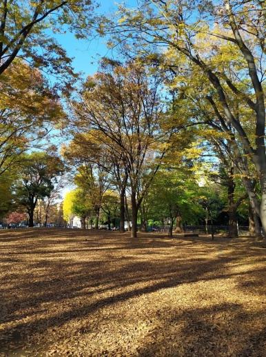 parc-ueno-tokyo